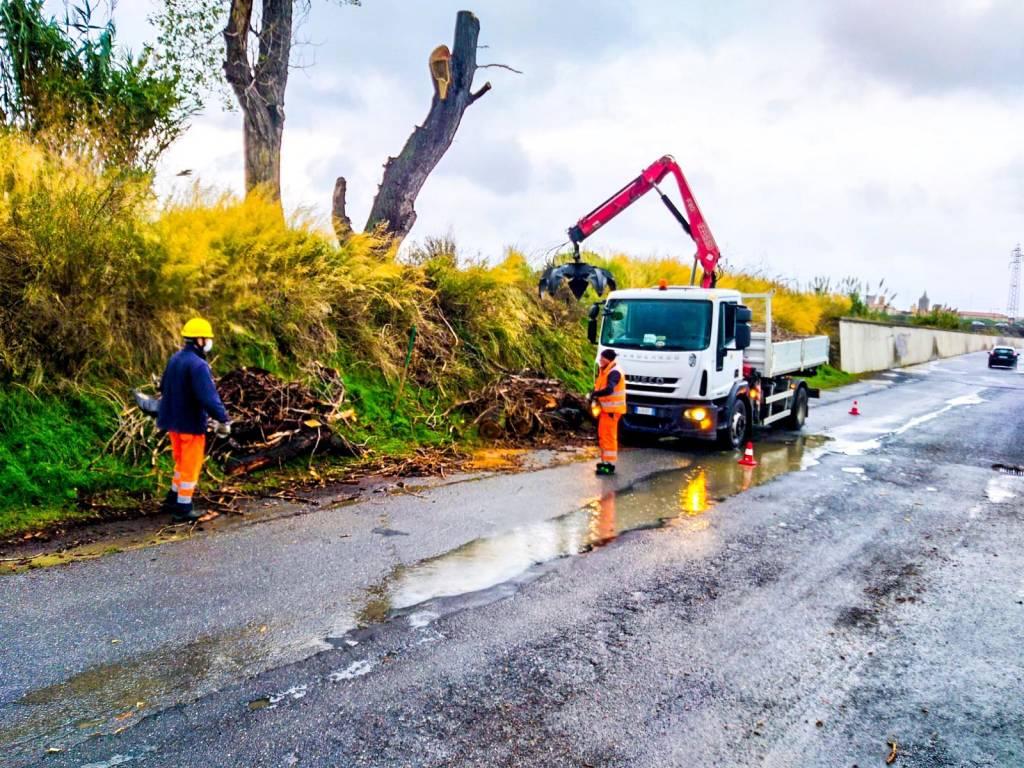 Albenga, protezione civile al lavoro per la pulizia di rii e canali