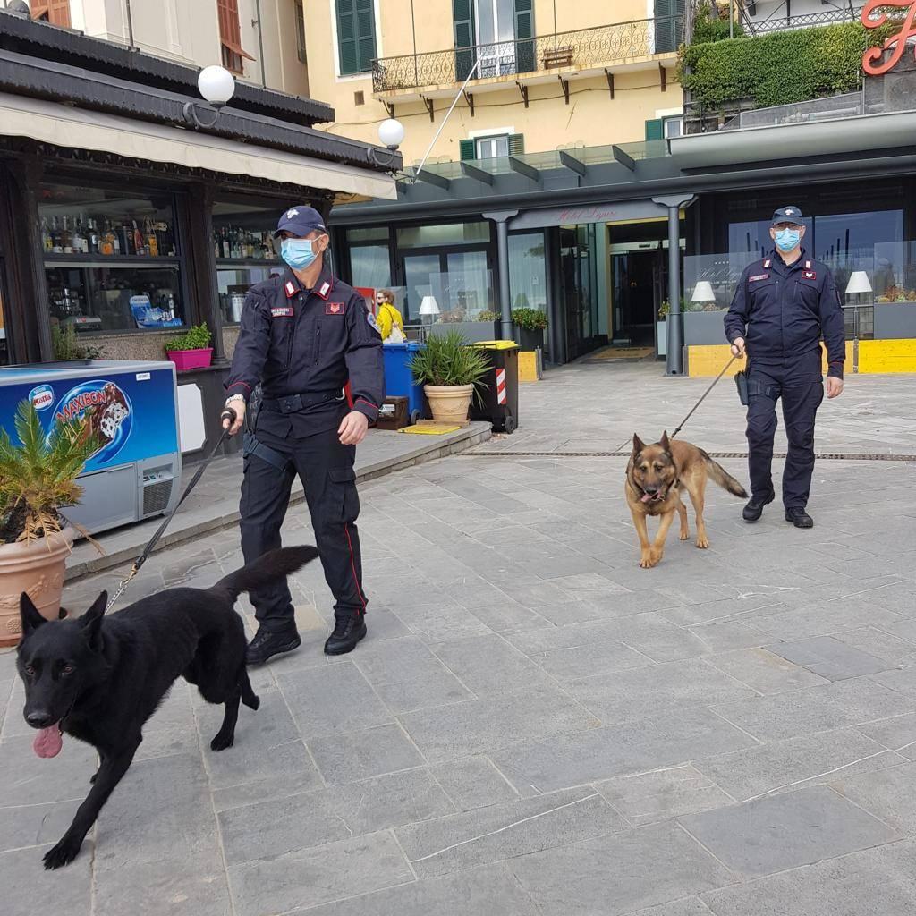 carabinieri alassio cinofili