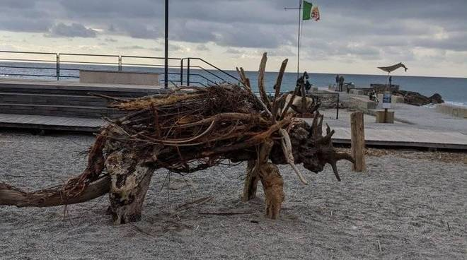 Animali con legna mareggiata Varigotti