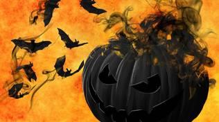 Halloween zucca nera