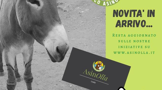 card asinolla