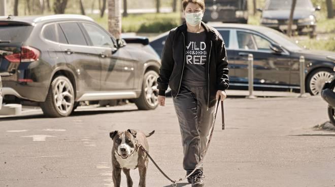 cane passeggiata covid