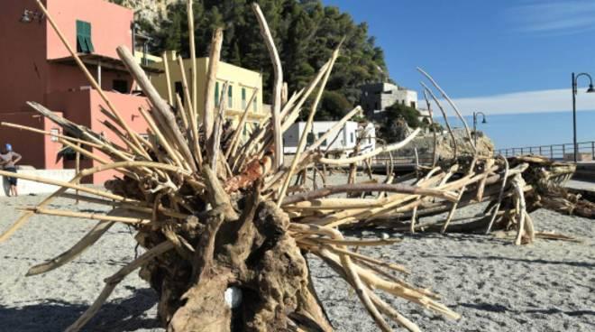 legname spiaggia varigotti