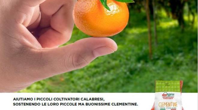 Coop sostegno agricoltori mandarini
