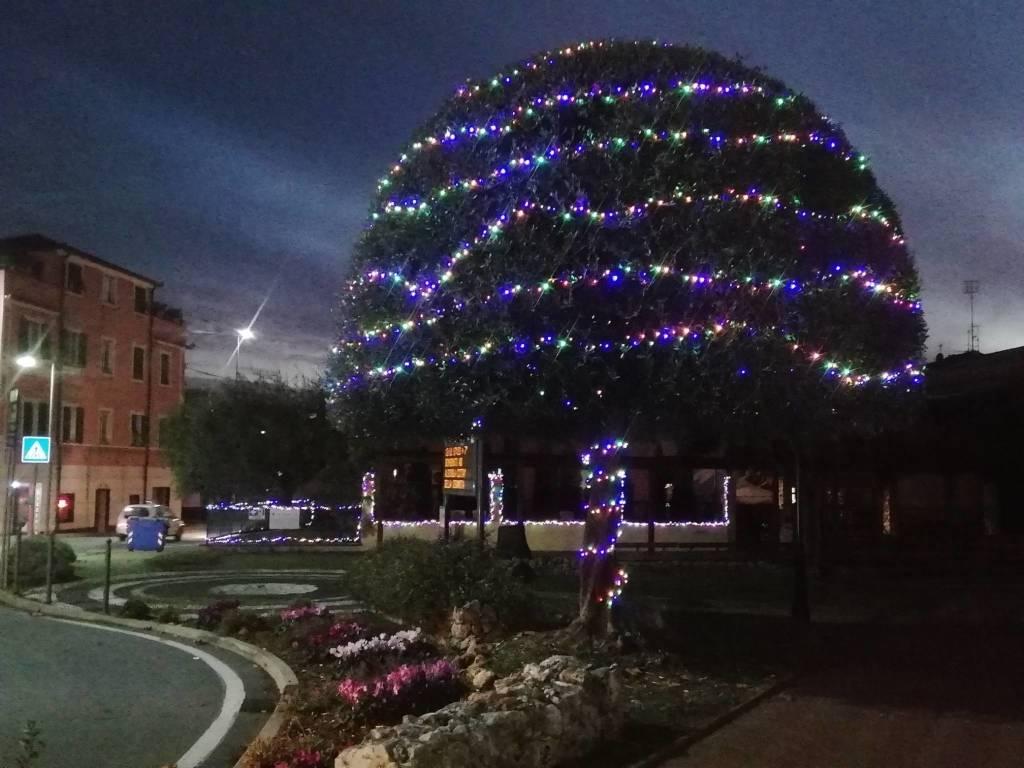 Luminarie Piazza Residenza Protetta albisola