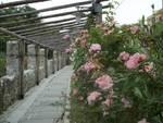 Giardino Mezzalunga Celle