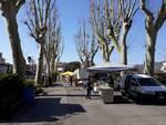 mercato produttori locali carcare