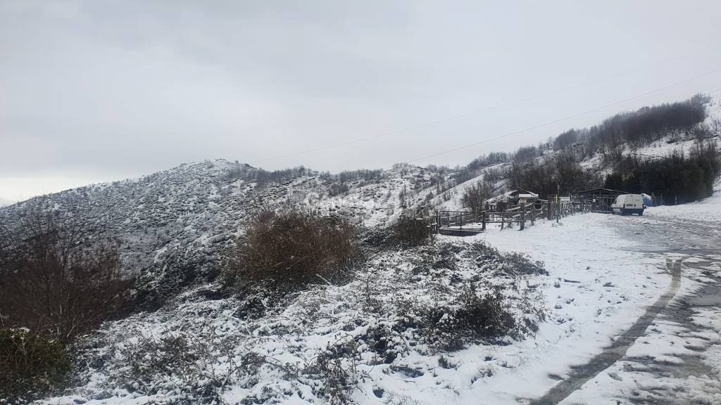 Genovesi sul monte Fasce per giocare sulla neve