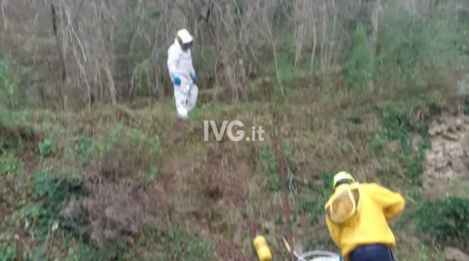 vespe volontari protezione civile