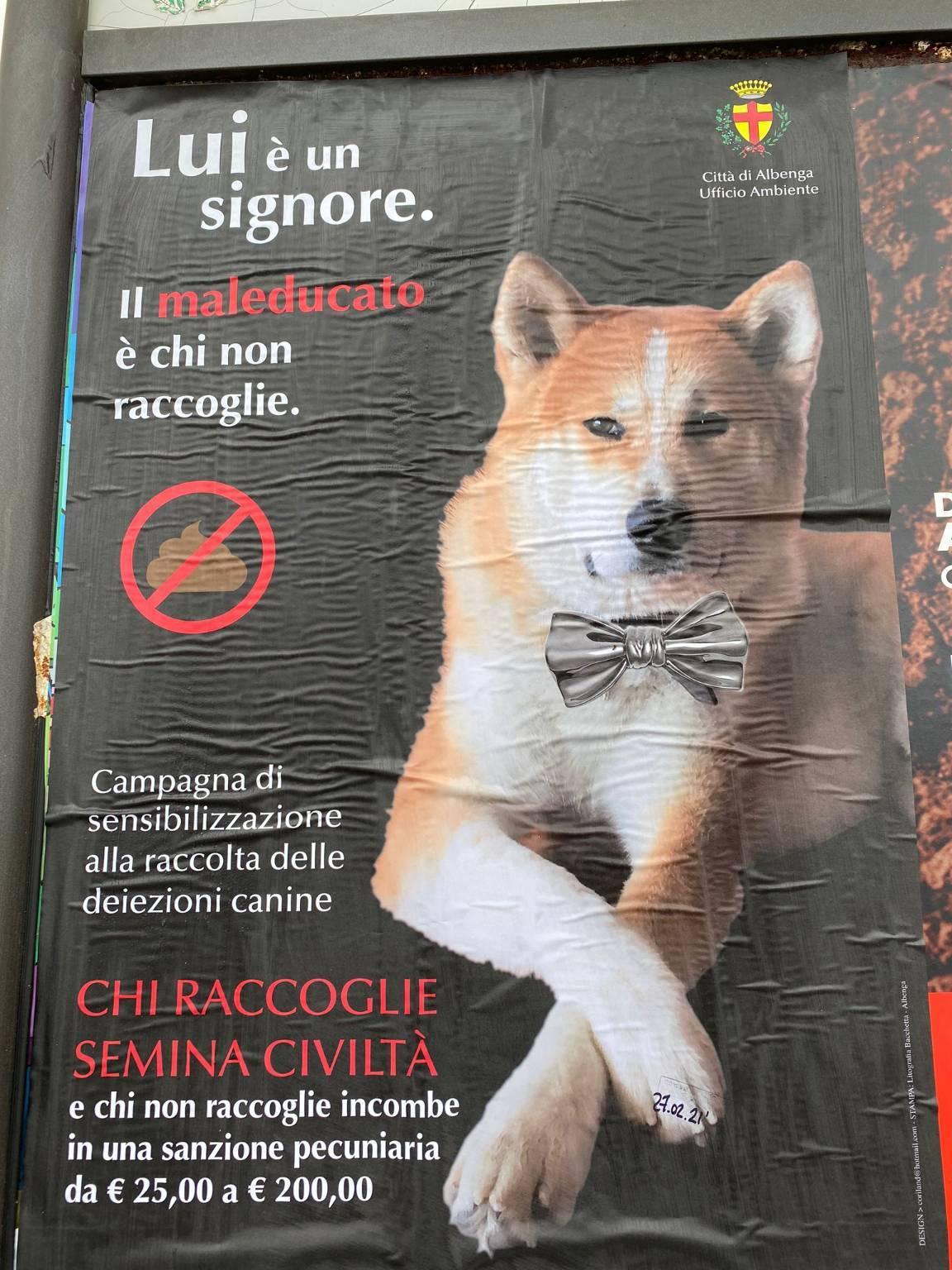 Albenga campagna deiezioni canine