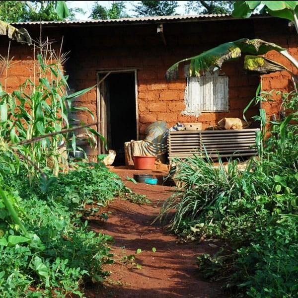 Bolivie progetto Camerun