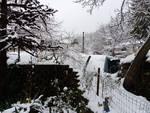 Continua a nevicare in Valbormida: lo spettacolo della dama bianca