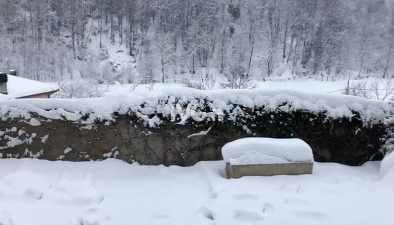 Osiglia neve