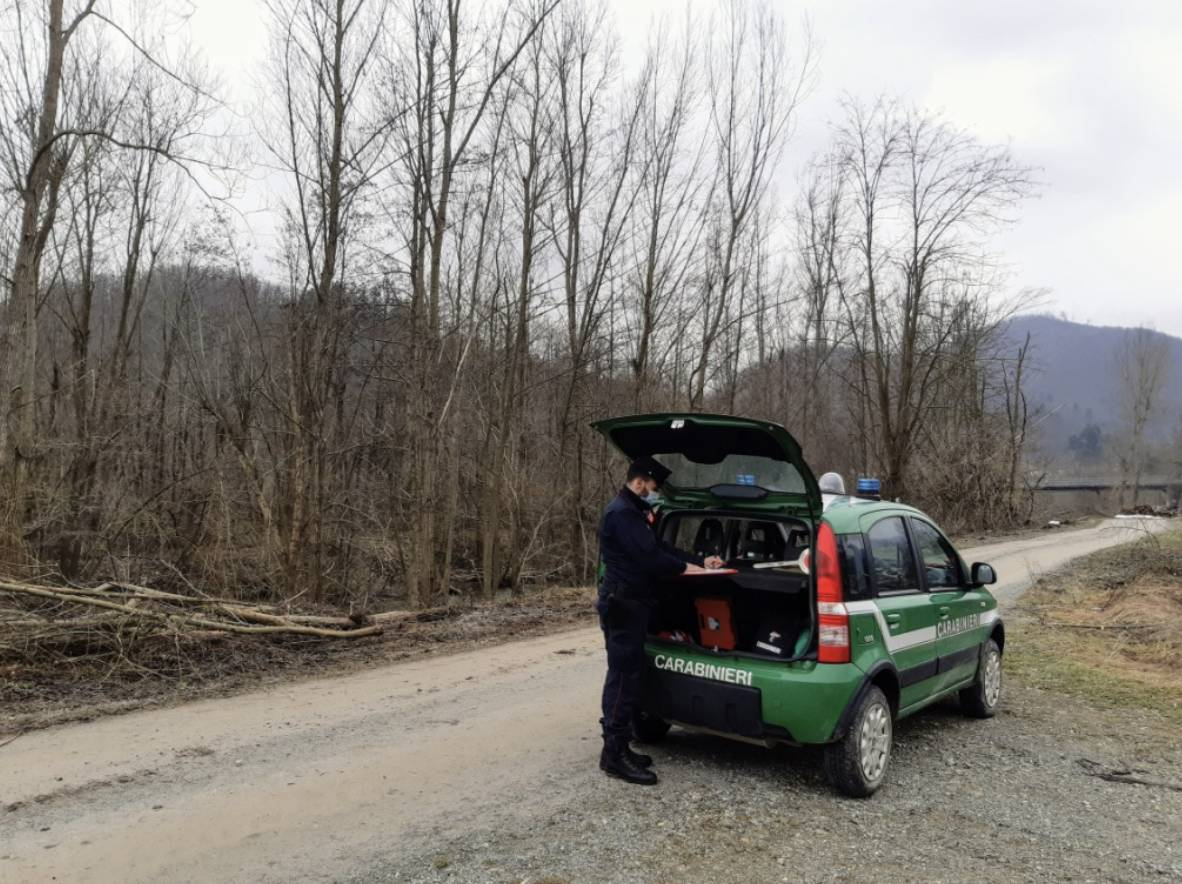 carabinieri forestale generica