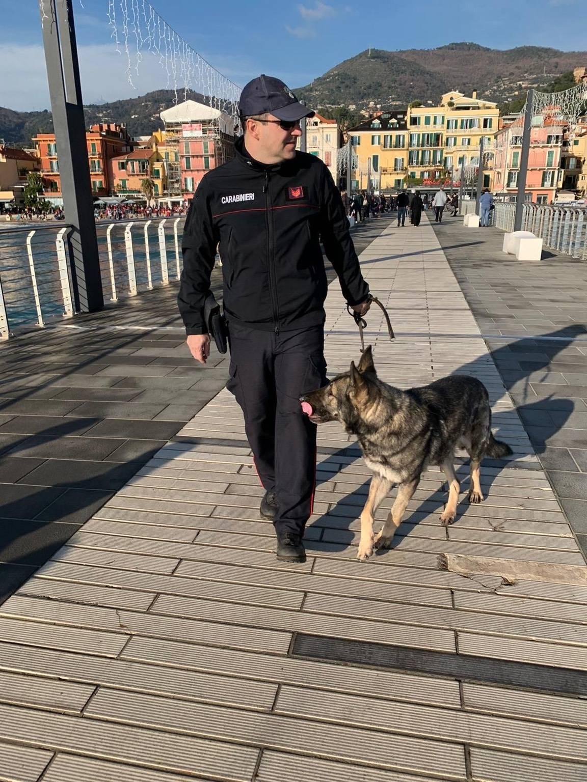 controlli carabinieri cinofili Alassio