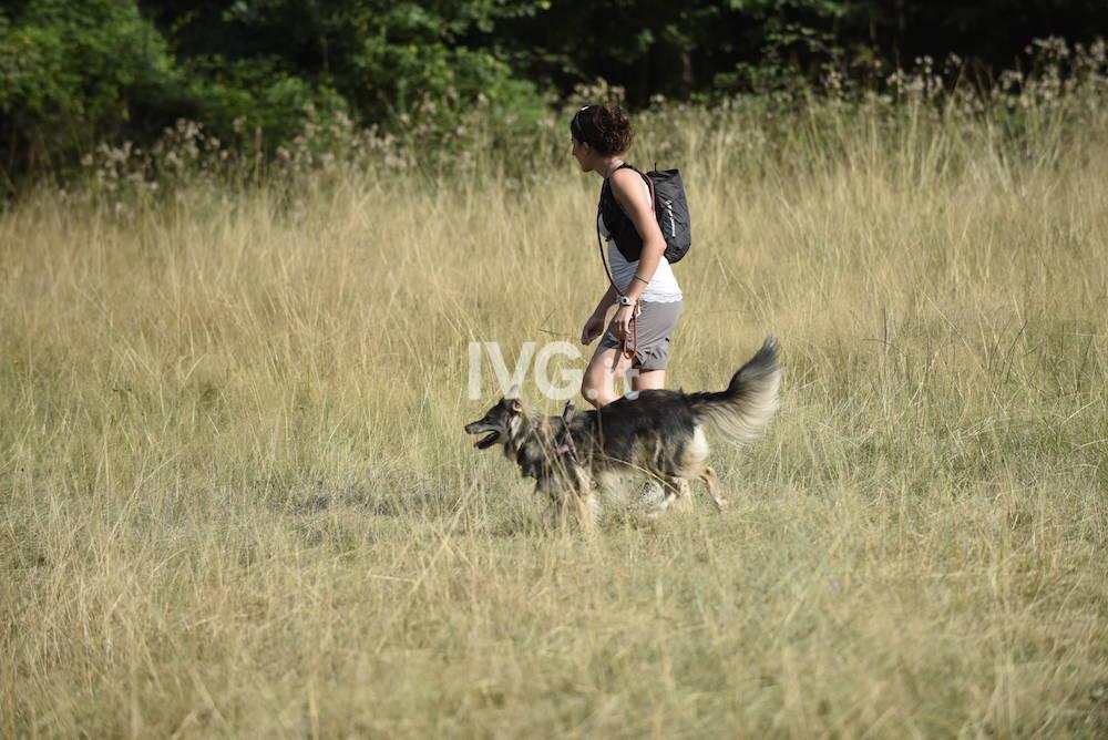 Dog Game Trekking, escursionismo a 4 zampe