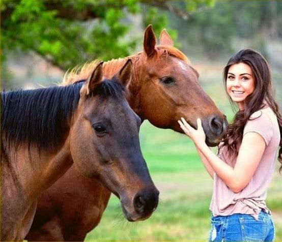 Cavalli con ragazza