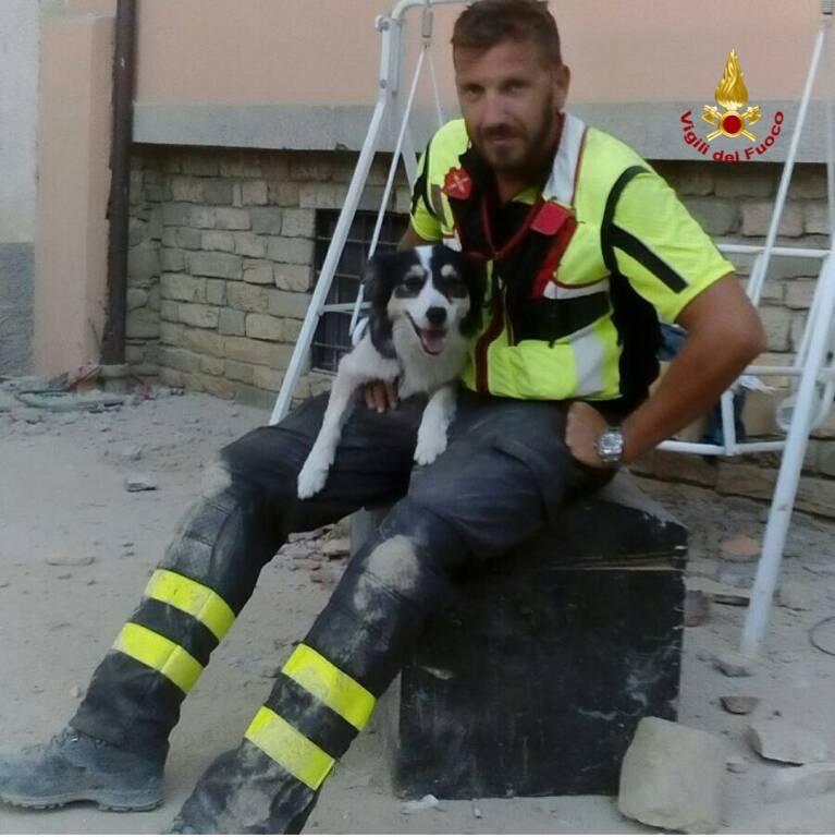 Addio a Canada, il cane pompiere