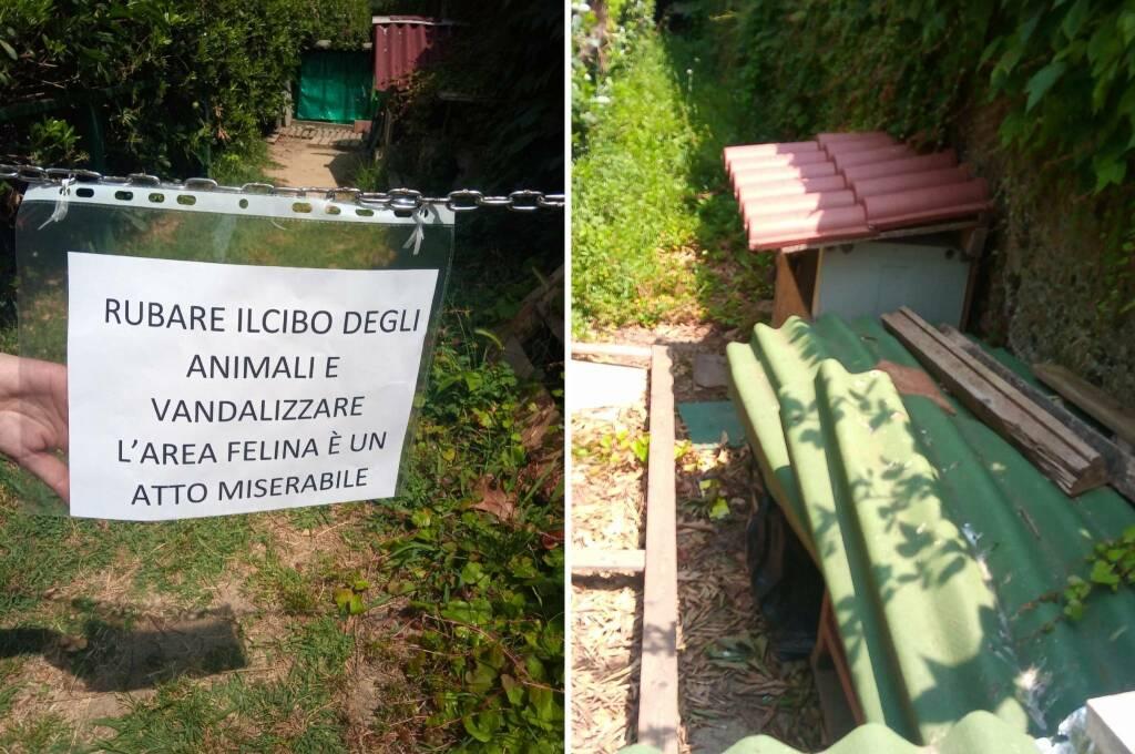 Colonia Felina Vandalizzata Savona