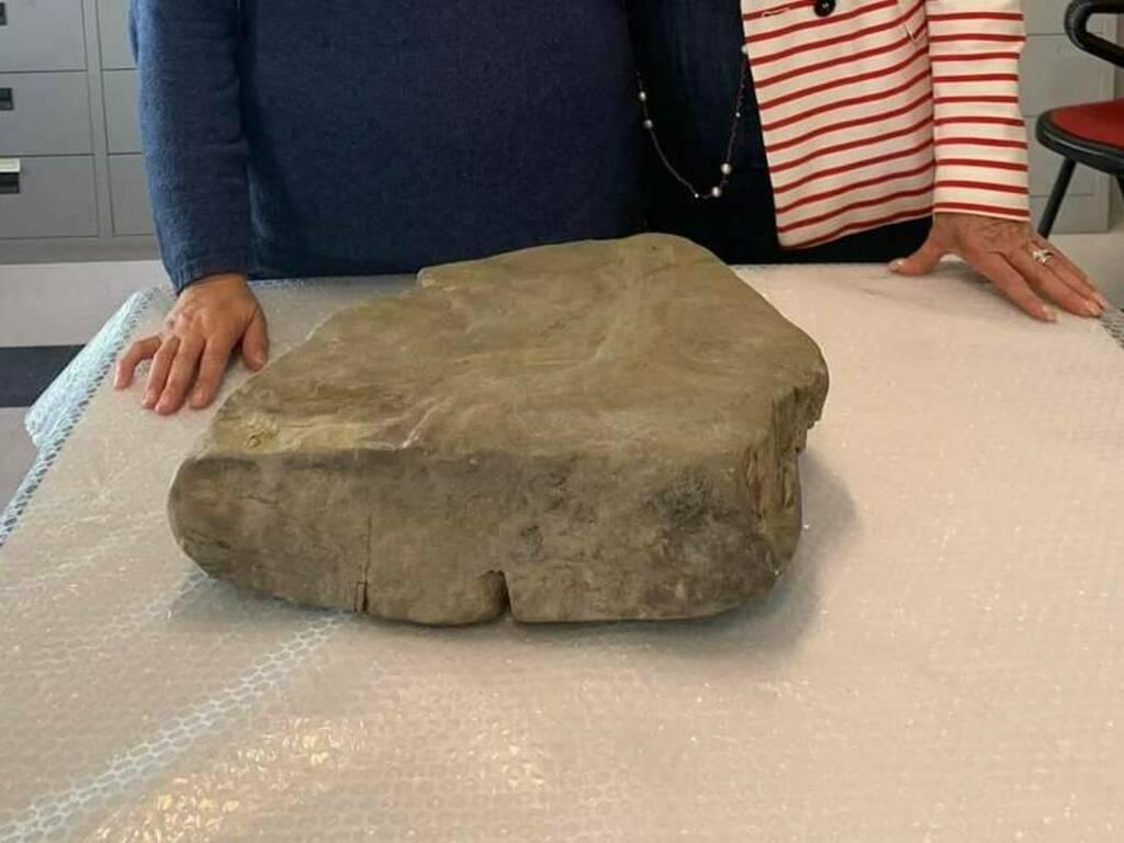 fossile ricci che fanno l'amore